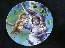 "Joe Thornbrugh's ""The Tree House:Northern Pygmy"" series Baby Owls of N. ... - $25.23"