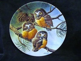 Joe Thornbrugh's Forty Winks: Saw Whet Owls series Baby Owls of N. Ameri... - $25.23