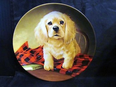 "Lynn Kaatz's Field Puppies "" Shirt Tales-The Cocker Spaniel "" Collector Plate"