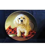 "Lynn Kaatz's Field Puppies "" Shirt Tales-The Cocker Spaniel "" Collector ... - $15.99"
