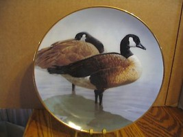 "Rod Lawrence's Canada Geese"" American Waterbirds Series - $37.39"