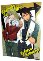 "Tiger & Bunny ""Karina / Kotetsu / Barnaby"" Animage NFS Promo Clear File ... - $6.88"