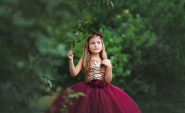 Burgundy and Champagne Tutu Dress, Burgundy and Champagne Flower Girl Dress - $50.00+
