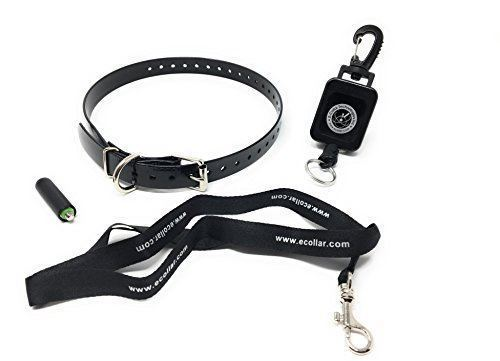 "Educator E Collar Lanyard, Antenna, Gear Keeper and Sparky PetCo 3/4"" Black High"