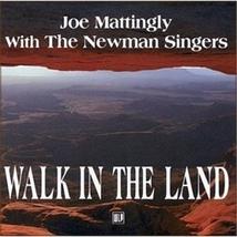 WALK IN THE LAND by Joe Mattingly