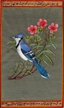 Blue Jay Bird Painting Rare Hand Painted Indian Miniature Wild Life Natu... - $104.99