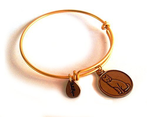 Bella Ryann Cat Round Gold Charm Bangle Bracelet