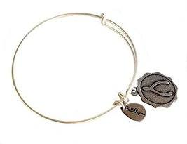 Bella Ryann Wishbone Early Edition on Round Circle Silver Charm Bangle Bracelet