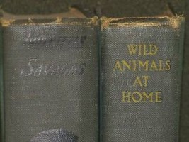 1922 Ernest Seton Wild Animals at Home 2 Little Savages