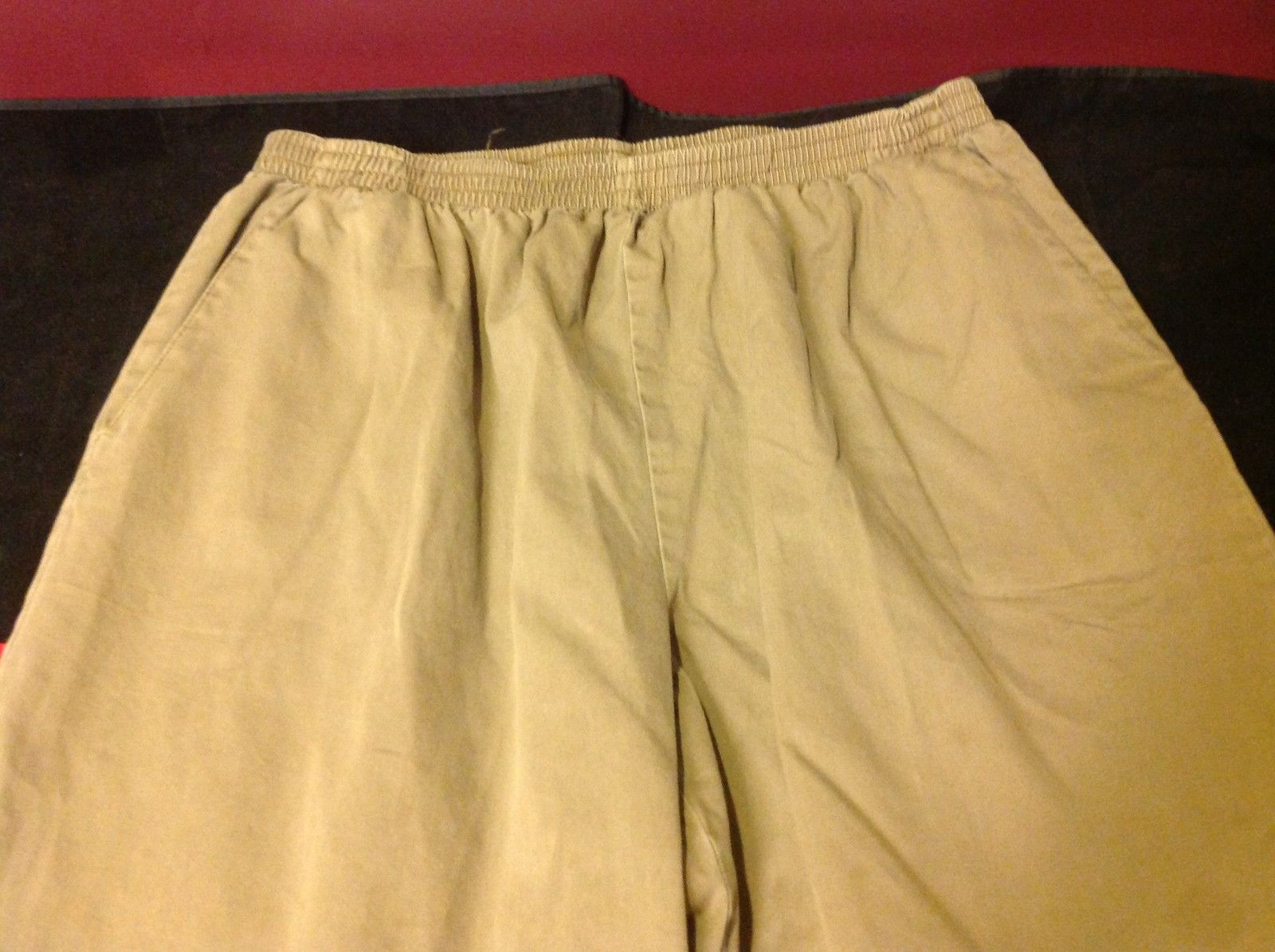 Alfred Dunner Womens Long Brown Casual Pants Elastic Waist 16 Inch W 40 Inch L