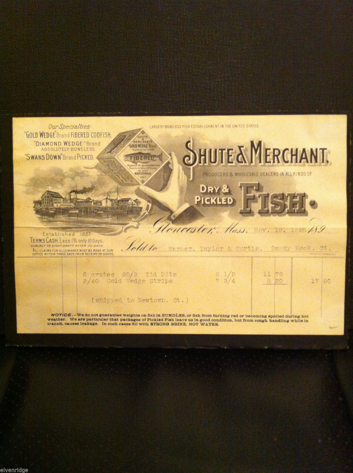 Antique Receipt 1898 Shute & Merchant Dry Pickled Fish Gloucester MA Sandy Hook