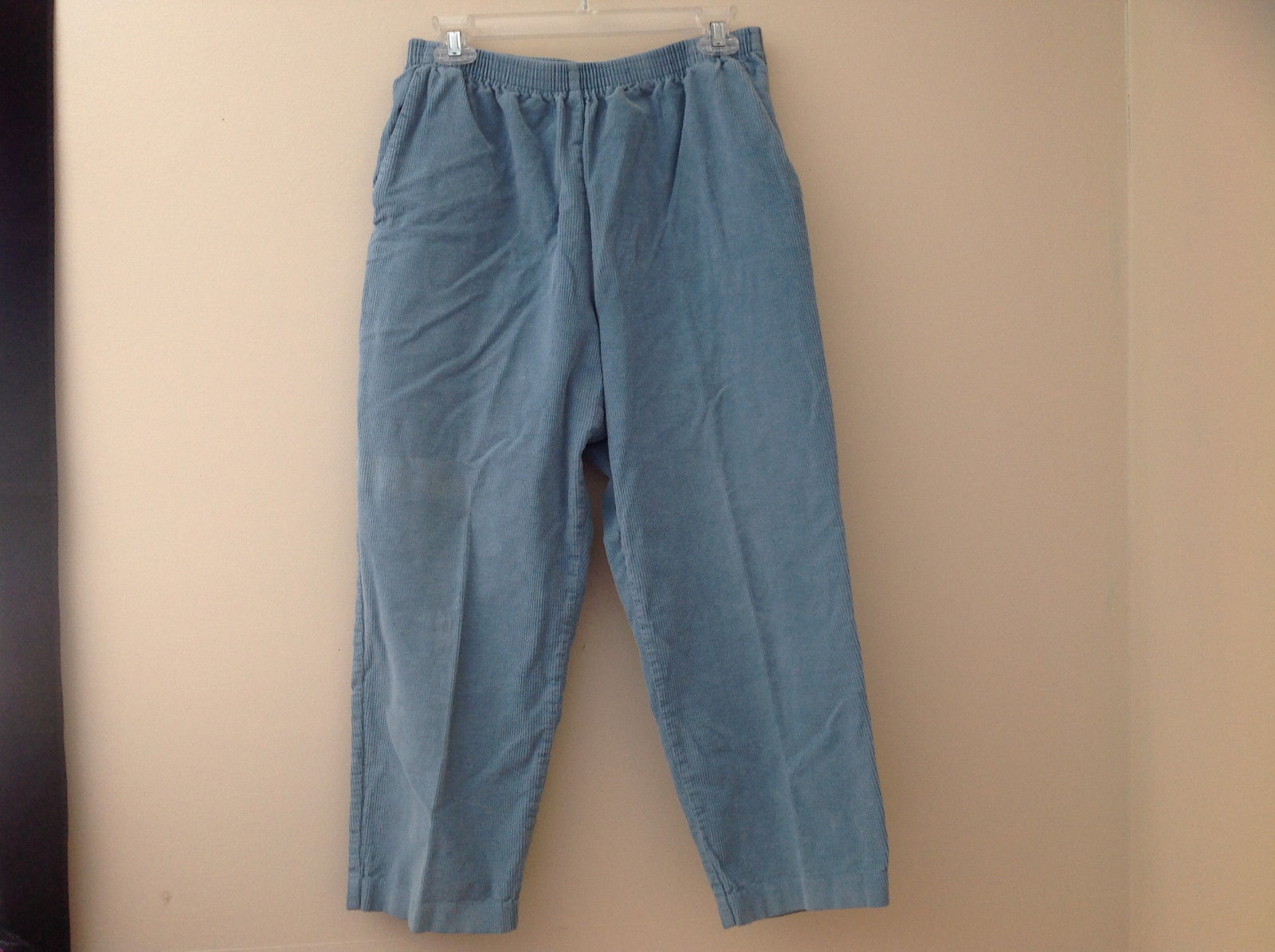 Baby Blue Alfred Dunner Blue Corduroy Elastic Waistband Pants Size 14P
