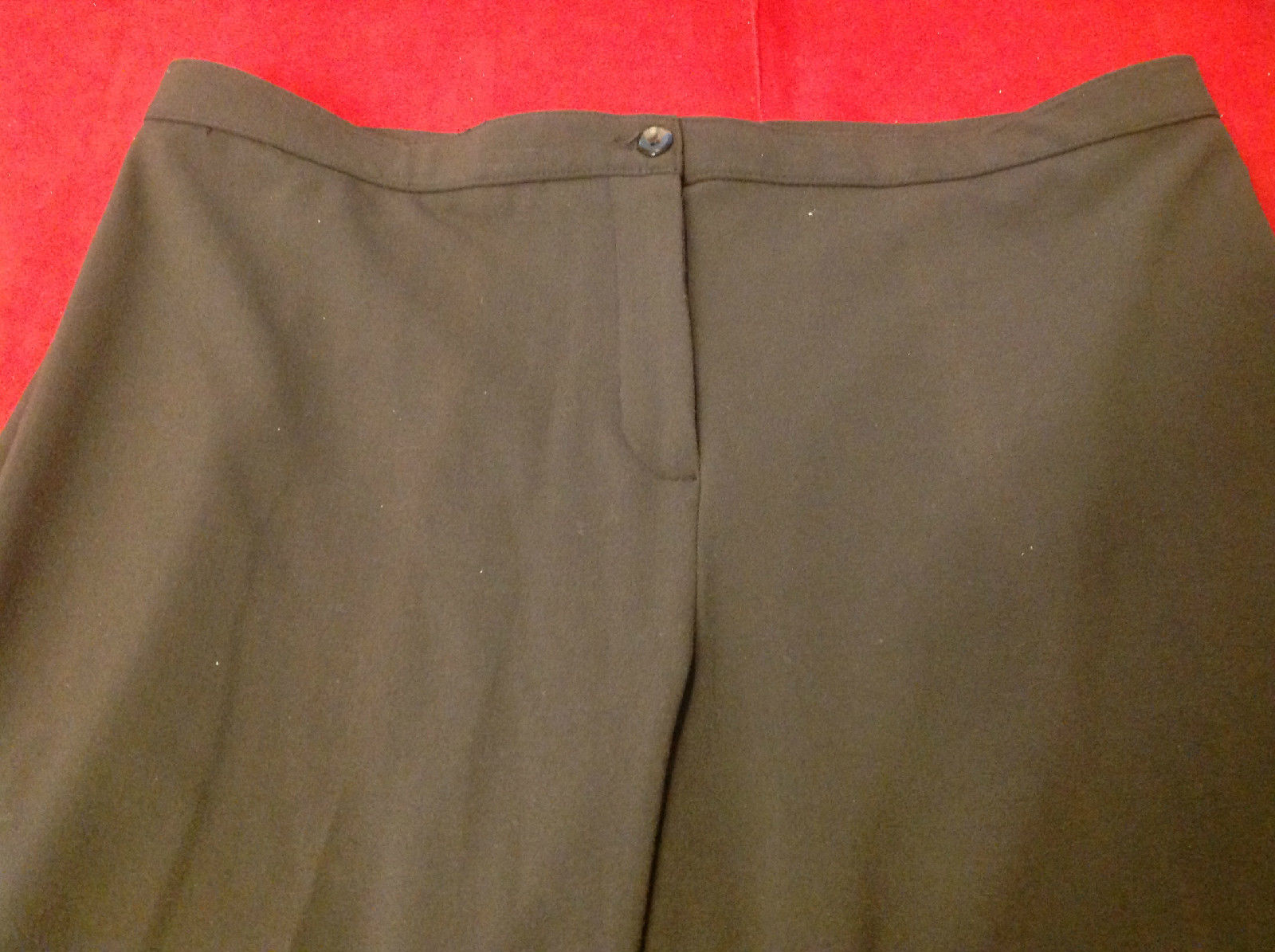Briggs New York Ladies Long Brown Pants Size 18S
