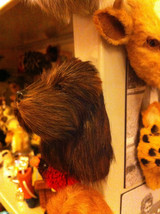 Brown Cocker Spaniel furry dog refrigerator magnet in 3D