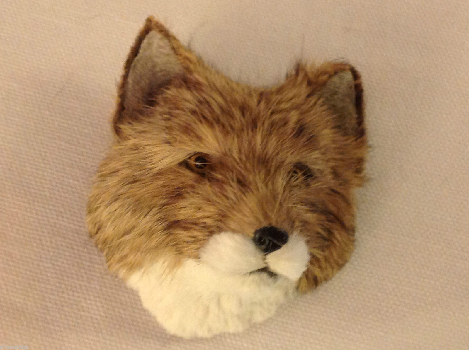 Coyote   furry refrigerator magnet in 3D