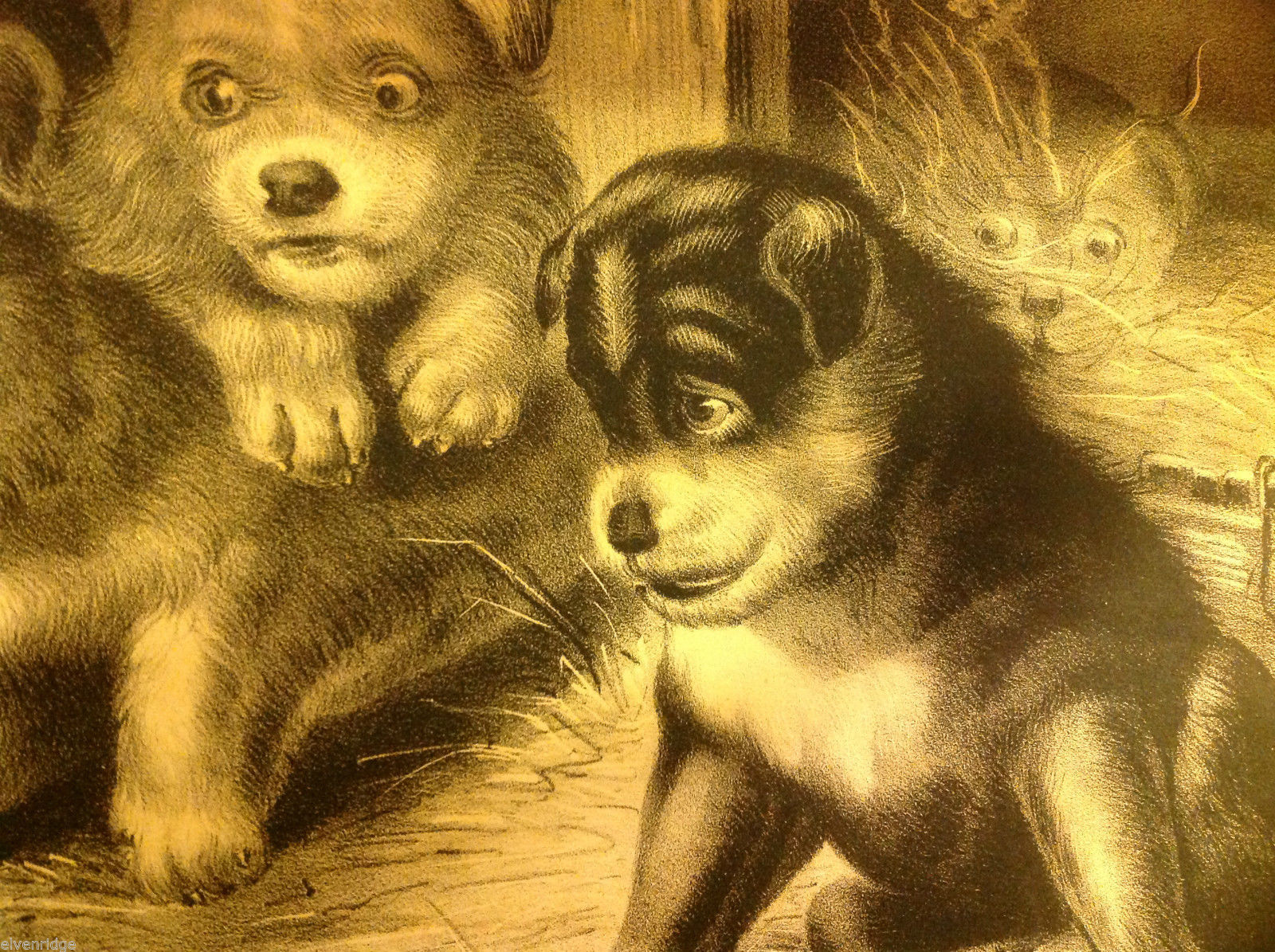 Currier Ives Lithograph 1868 Westie dogs and rat titled Who's Afraid of You?