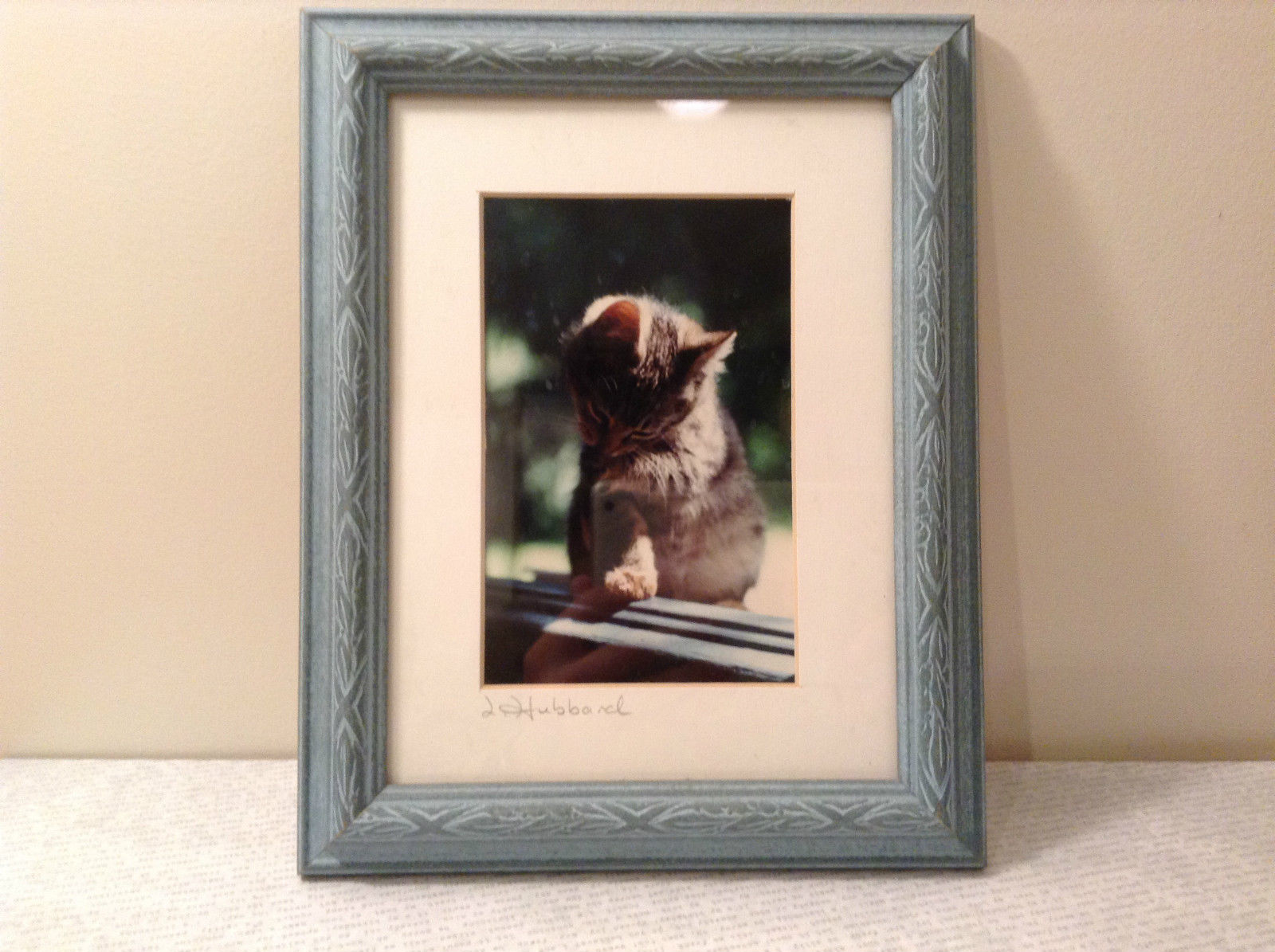 Cute Framed Photo of Kitten in Light Blue Wood Frame by Linda Hubbard