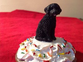 Cupcake gift box with choice of Specific Dog Breed Letters J to S Topper image 11