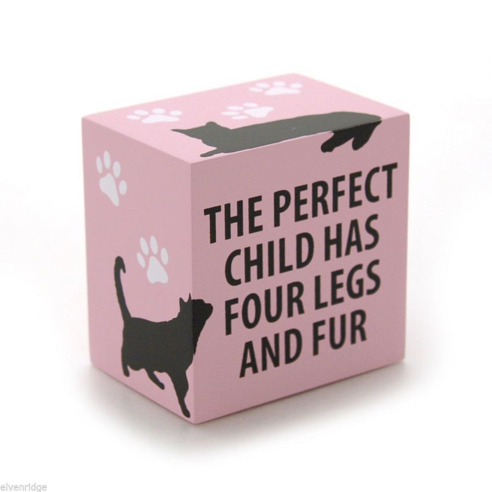 Desk Plaque Sign for cat lovers Perfect Child has four legs and Fur