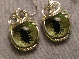 Eye of Cat earrings silver wrapped and silver ear posts great steampunk fodder