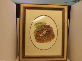 Framed Drawing of a Wood Thrush Bird in Wooden Scenery Signed by Artist image 3