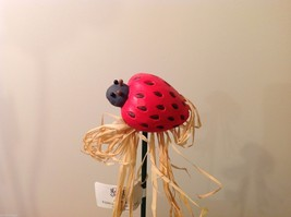 Home Grown Plant Pot Stick Strawberry Ladybug  Play w your Food Sculpted