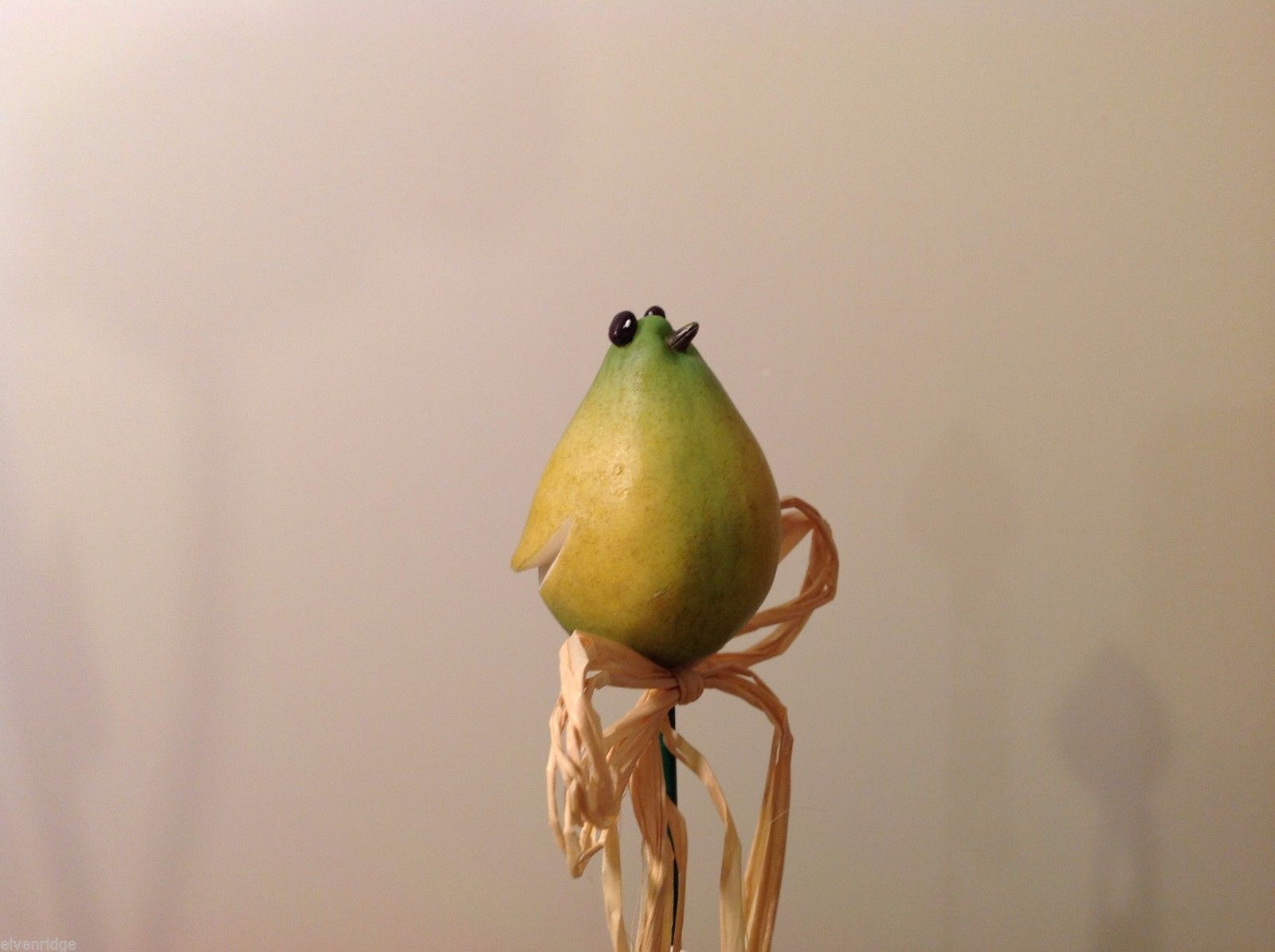 Home Grown Plant Pot Stick Pear  Bird  Play w your Food Sculpted