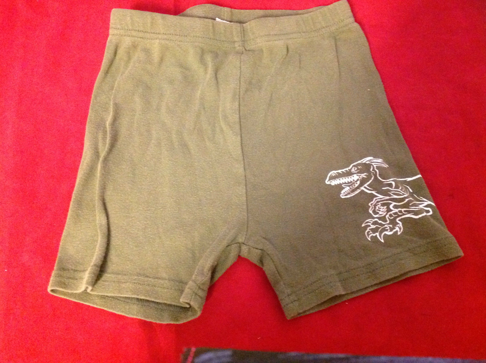 Kids Green Shorts with Picture of Dragon on Leg in White Size 6