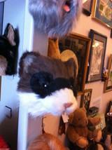 Masked Ferret  furry refrigerator magnet in 3D image 1