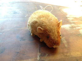 Palm Fiber Brown Hamster Brush Eco Fiber Sustainable Made in Philippines