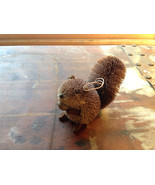 Palm Fiber Gray Squirrel with Nut  Brush Ornament  Eco Fiber Sustainable - $39.99