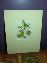 "Print Pair of Blue Tits ""The Most Beautiful Birds"" Framed Wall Art"
