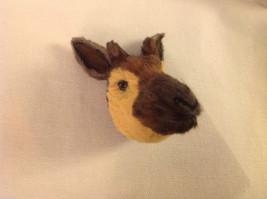 Okapi  furry refrigerator magnet in 3D