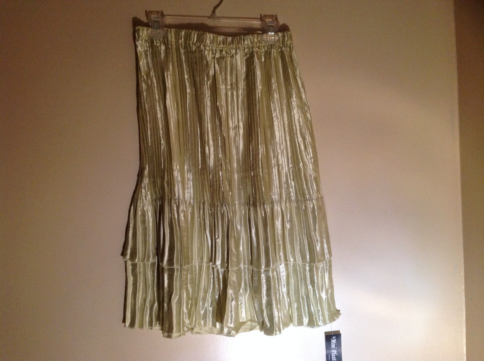 Pale Green Calf Length Pleated Skirt Shiny Material by Magic Scarf Co.