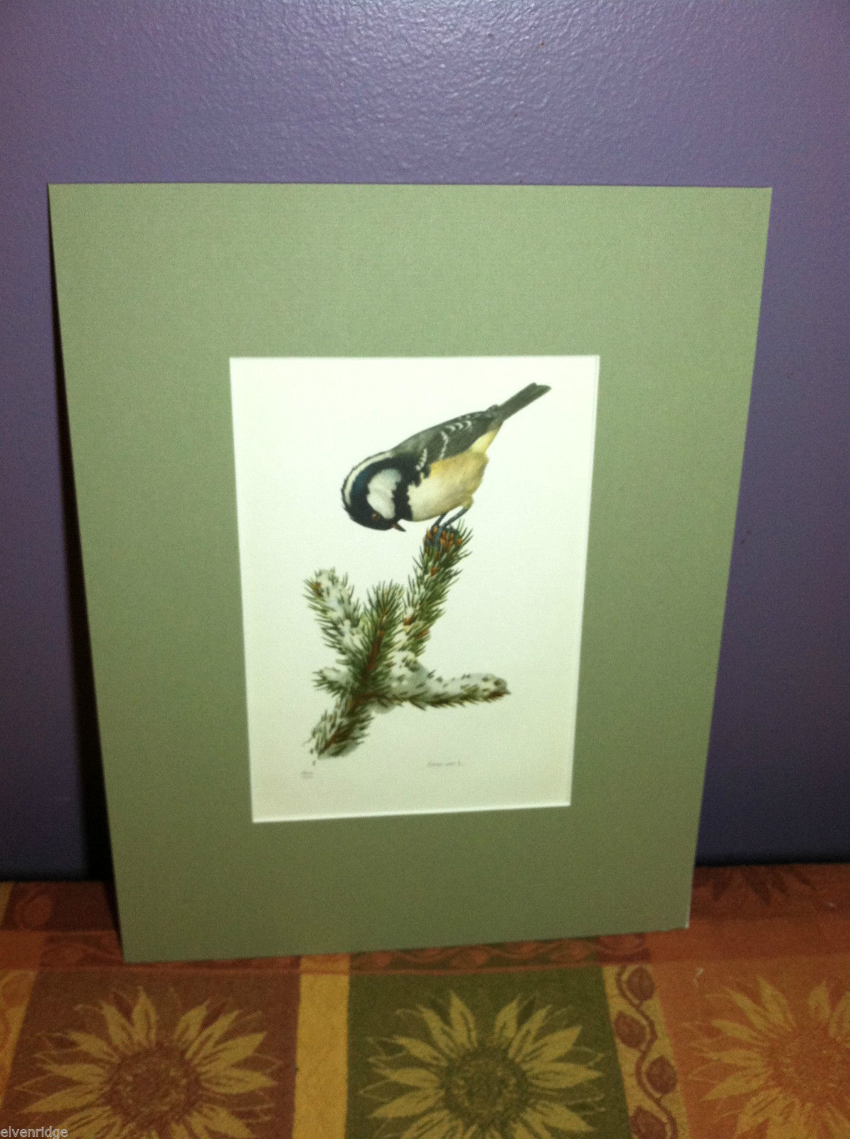 "Print of Coal Tit/Parus Ater ""The Most Beautiful Birds"" Framed Wall Art"
