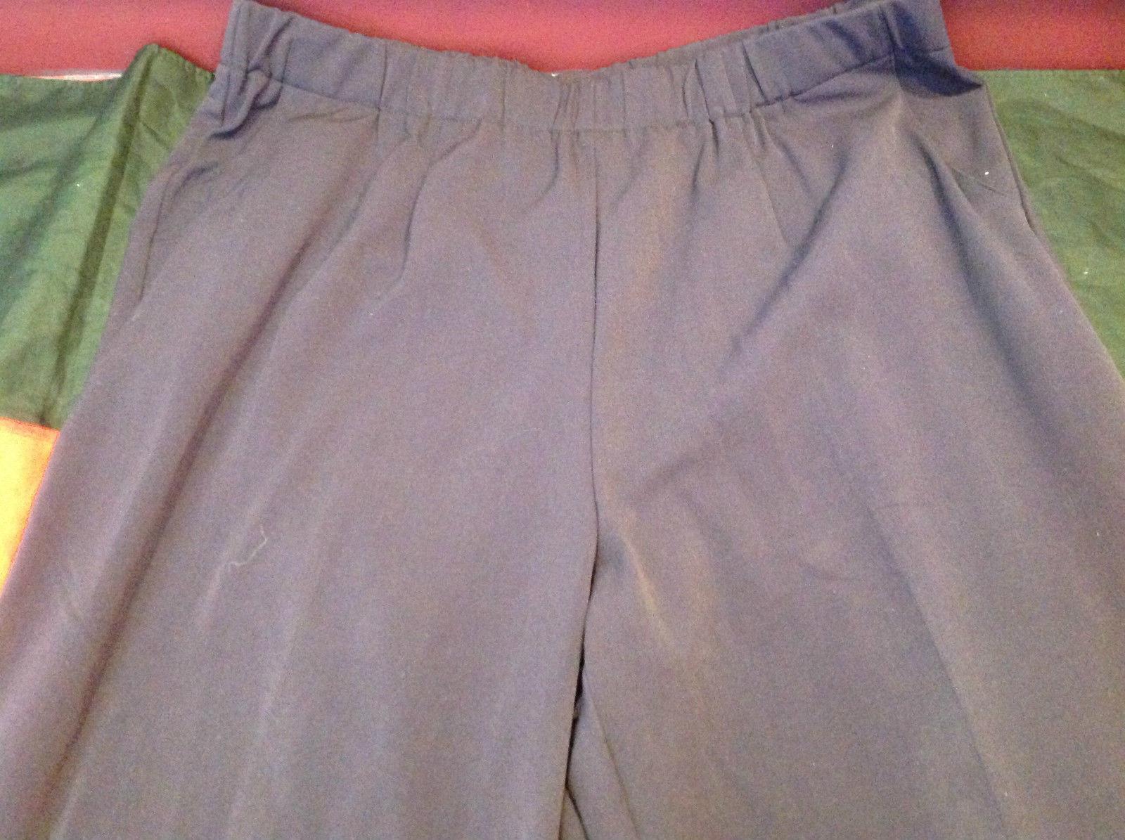 Purple Colored Dressbarn Womens Pants Size 18W