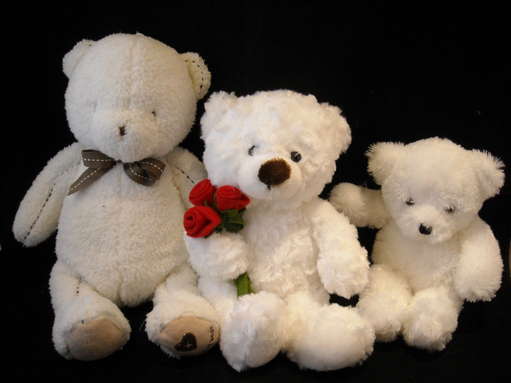 Set of 3 White Stuffed Bear Toys