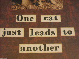 Red Wooden Box Sign One Cat Just Leads to Another Saying image 4