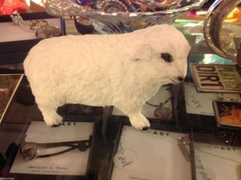 White Sheep  plaster figurine with recycled rabbit fur