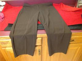 Briggs New York Ladies Long Brown Pants Size 18S image 3