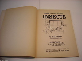 Children's Softcover Book- Insects- Question and Answer image 2