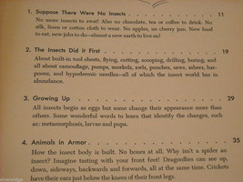 Children's Softcover Book- Insects- Question and Answer image 4