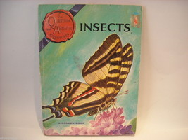 Children's Softcover Book- Insects- Question and Answer image 8