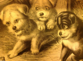 Currier Ives Lithograph 1868 Westie dogs and rat titled Who's Afraid of You? image 3