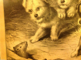 Currier Ives Lithograph 1868 Westie dogs and rat titled Who's Afraid of You? image 4