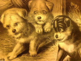 Currier Ives Lithograph 1868 Westie dogs and rat titled Who's Afraid of You? image 2
