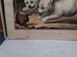 Currier Ives Lithograph 1868 Westie dogs and rat titled Who's Afraid of You? image 7