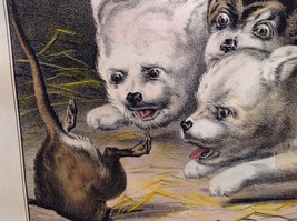 Currier Ives Lithograph 1868 Westie dogs and rat titled Who's Afraid of You? image 10