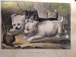 Currier Ives Lithograph 1868 Westie dogs and rat titled Who's Afraid of You? image 6