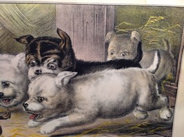 Currier Ives Lithograph 1868 Westie dogs and rat titled Who's Afraid of You? image 11